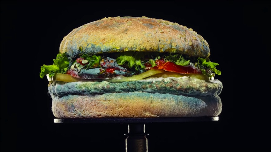 moldy whopper burger king